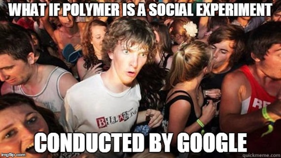 Polymer is a Social Experiment
